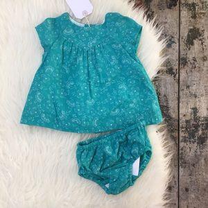 ZARA MINI BABYGIRL dress & bloomers 1-3 mo NWT